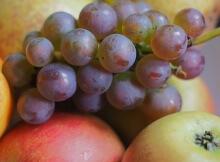 Pesticide foods