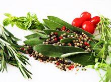 8 medicinal foods