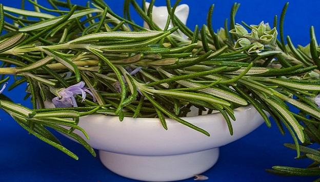 Rosemary for health & longevity