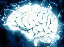 Probiotics & Alzheimer's