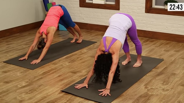 Hatha yoga workout video
