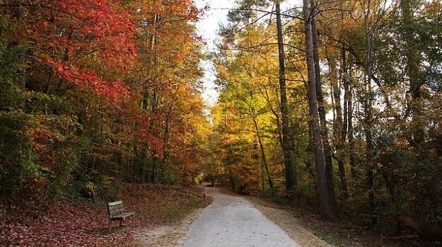 Fun outdoor fall workout ideas
