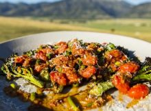 Grilled tomatoes & broccoli summer CSA recipe